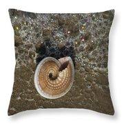 Seashells By The Sea Throw Pillow