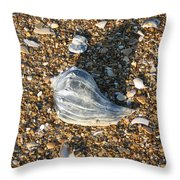 Seashells On The Seashore Throw Pillow
