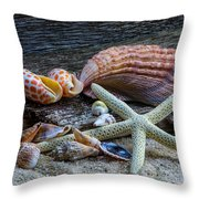 Seashells And Driftwood Throw Pillow