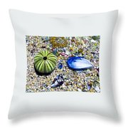 Seashore Colors Throw Pillow
