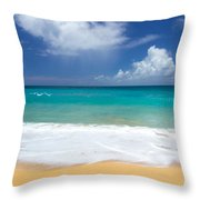 Seashore Serenity Throw Pillow