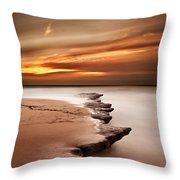 Seashore Wonders Throw Pillow