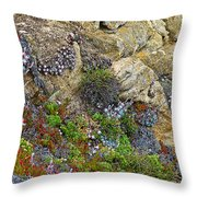 Seaside Cliff Garden In Point Lobos State Reserve Near Monterey-california  Throw Pillow