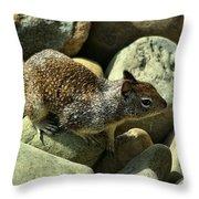 Seaside Ground Squirrel Throw Pillow