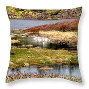 Seaside Marsh Throw Pillow