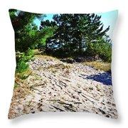 Seaside Path Throw Pillow