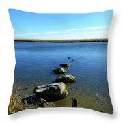 Seaside Rocks Throw Pillow