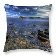 Seaside Snap Throw Pillow