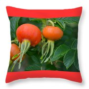 Season End Throw Pillow