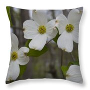 Season Of Dogwood Throw Pillow