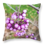 Seasonal Charm Throw Pillow