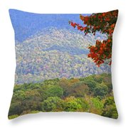 Seasonal Color Throw Pillow
