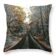 Seasonal Mix Throw Pillow