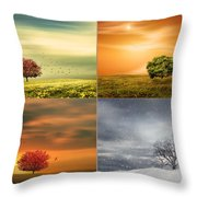 Seasons' Delight Throw Pillow