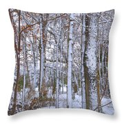 Season's First Snow Throw Pillow