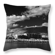 Seasons In Infrared Throw Pillow