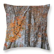 Seasons Overlapping Throw Pillow