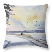Seawall After Rain Throw Pillow