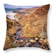 Seaward Throw Pillow