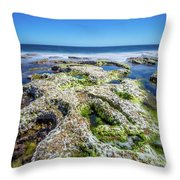 Seaweed And Salt. Throw Pillow by Gary Gillette