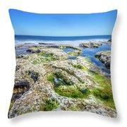 Seaweed And Salt Landscape. Throw Pillow by Gary Gillette