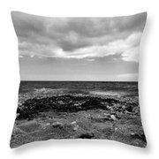 Seaweed On The Beach Throw Pillow
