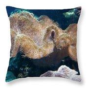 Seaweed Throw Pillow by Svetlana Sewell