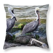 Sebastian Inlet State Park Vii Throw Pillow
