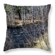Secluded Brook Throw Pillow