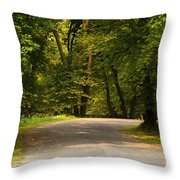 Secluded Forest Road Throw Pillow