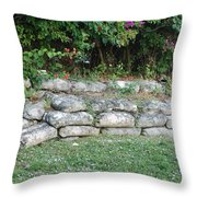 Secret Block Wall Throw Pillow