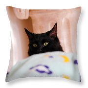 Secret Mission For Catnip Throw Pillow