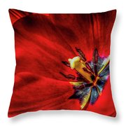 Secret Of The Red Tulip Throw Pillow