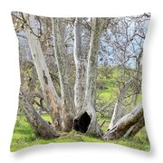 Secret Passageway Throw Pillow