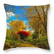 Secret Path At Lafayette Park Landscape Throw Pillow