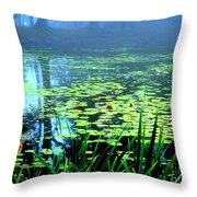 Secret Quiet Pond Throw Pillow