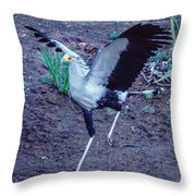 Secretary Bird Running Throw Pillow