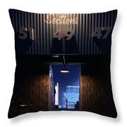 Section 49 Throw Pillow