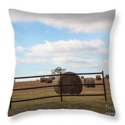 Secure Fence Throw Pillow