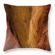Sedona Canyon Abstract Throw Pillow