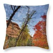 Sedona Fall Colors Throw Pillow