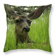 See Me Now Throw Pillow