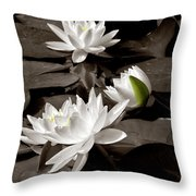 See Roses In The Pond Throw Pillow