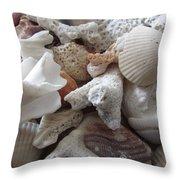 See Sea Shells Fom The Sea Throw Pillow