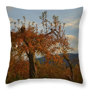 See The Beautiful In Every Day Throw Pillow