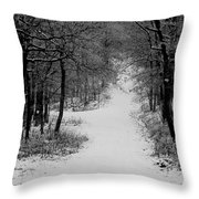 See Where It Leads. Throw Pillow