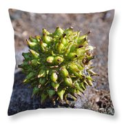 Seed Capsule Throw Pillow