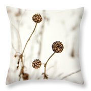 Seed Heads In The Snow Throw Pillow