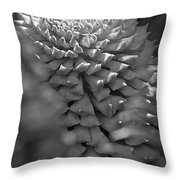 Seed Pod Black And White Throw Pillow