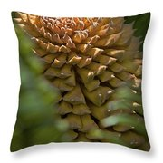 Seed Pod Throw Pillow